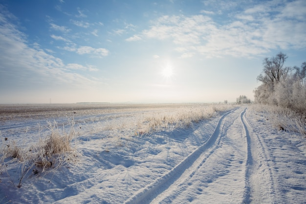 Winter landscape field with road and sun over horizon