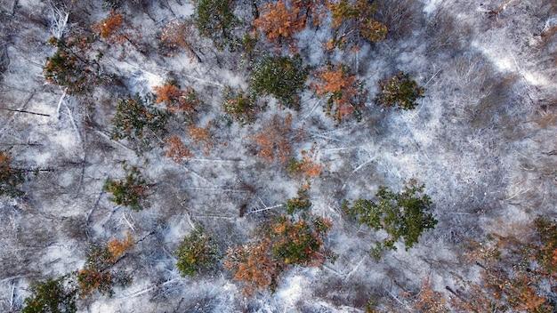 上空からの冬の風景。ドローンビュー写真。