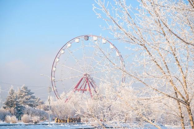 Winter landscape of frosty trees Premium Photo