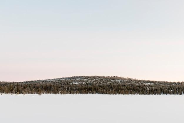 Winter landscape in kiruna lapland sweden