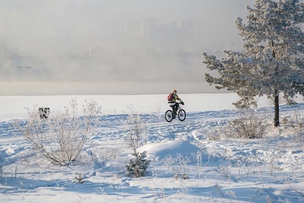 凍るような木の冬の風景、都市公園の白い雪。
