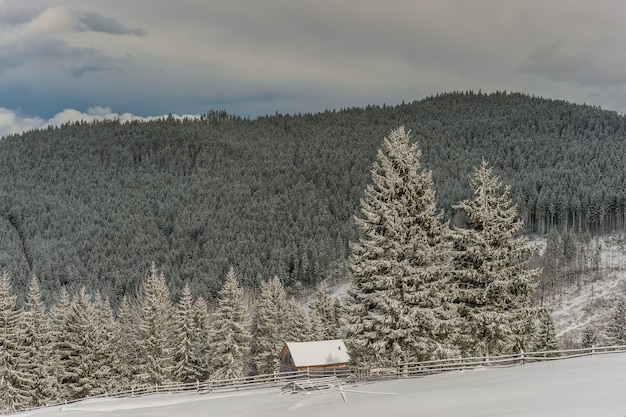눈 동화의 겨울 풍경
