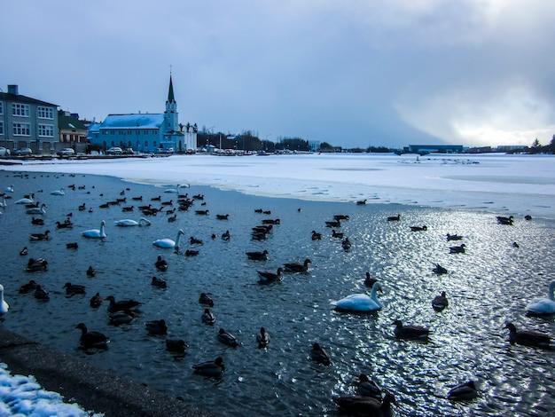 Winter landscape in reykjavik, iceland, northern europe.