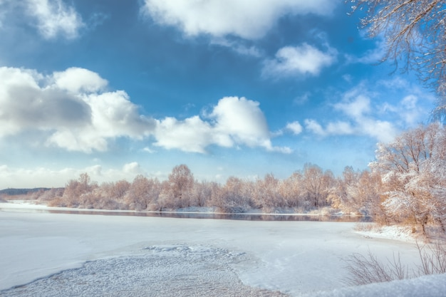 Winter landscape on a river with a forest under a blue sky