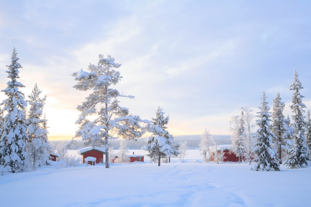 冬の風景スウェーデンラップランド