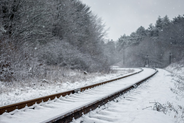 冬の風景、線路は遠く、両側にあります-forest_