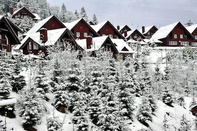 겨울 풍경입니다. 눈 덮힌 전나무 나무로 둘러싸인 carpathians 산의 언덕 경사면에 전통적인 목조 주택.
