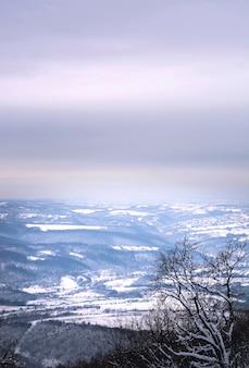 Winter landscape view