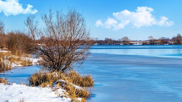 Зимний пейзаж с деревом на берегу реки в солнечную погоду