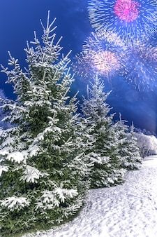 축제 불꽃 경례를 배경으로 크리스마스 나무가 있는 겨울 풍경