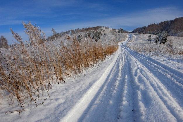 田舎道のある冬の風景
