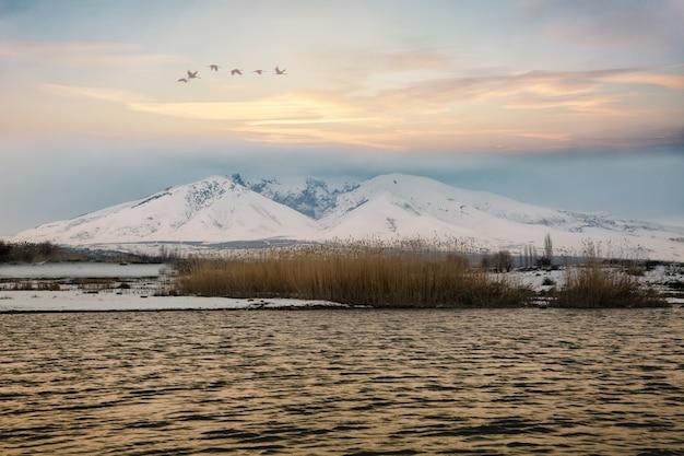 Зимний пейзаж с небольшим озером, горами и летающими птицами во время заката