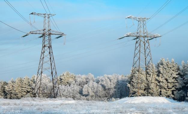 숲과 공원 근처 설원에 전선이 있는 겨울 풍경