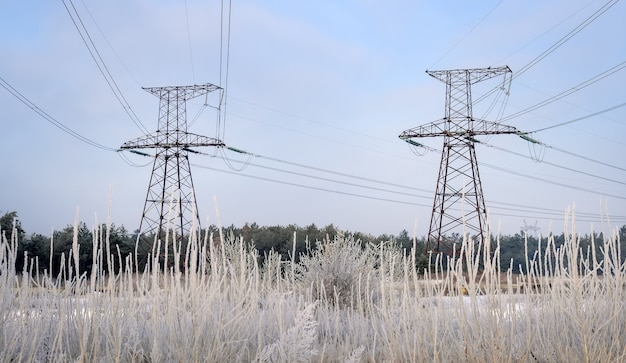 Winter landscape with power lines in a snowy field near the forest and park