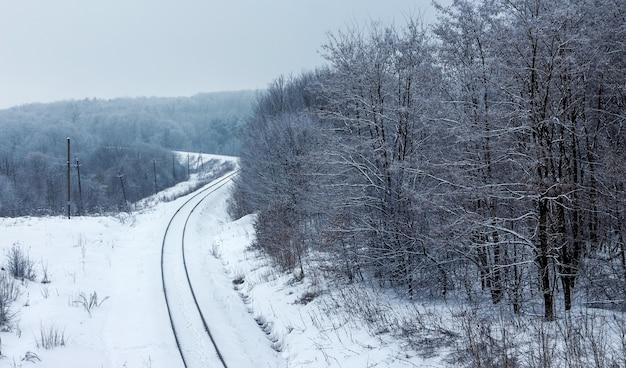 森の中を走る線路のある冬の風景_