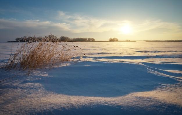 Зимний пейзаж с тростником, замерзшим озером и закатным небом. композиция природы.