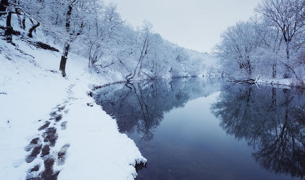 Winter landscape with river in forest