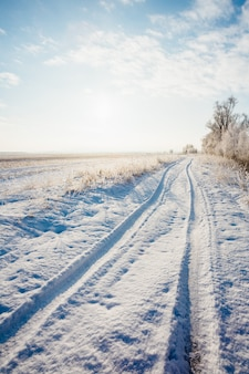 Winter landscape with a road in the snow