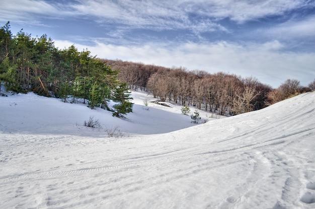 눈과 나무와 겨울 풍경 눈 산입니다.