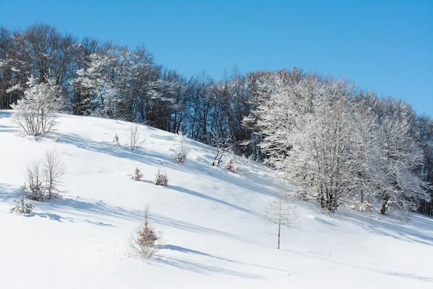Winter landscape with snow, campo felice, italy