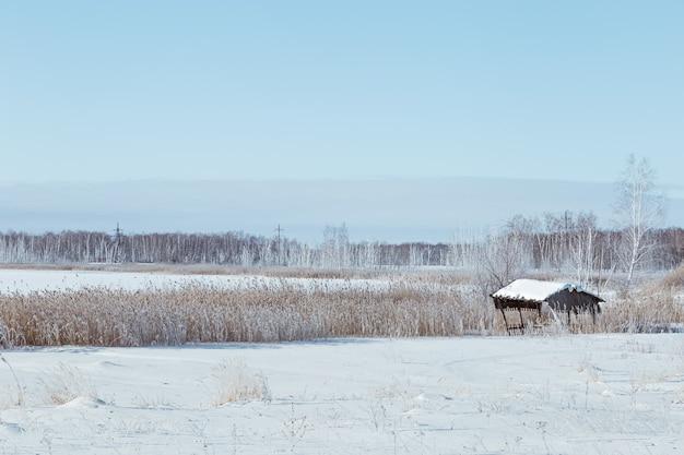 雪に覆われたフィールドと霜の白い雪とlueスカイグラスのある冬の風景は太陽の下で輝きます