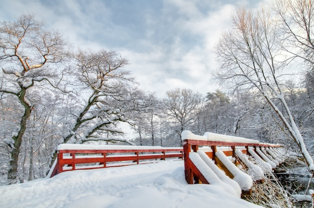 Winter landscape with a snowy bridge