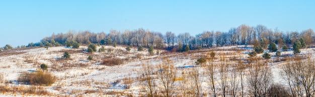Зимний пейзаж со снежным полем и лесом вдалеке