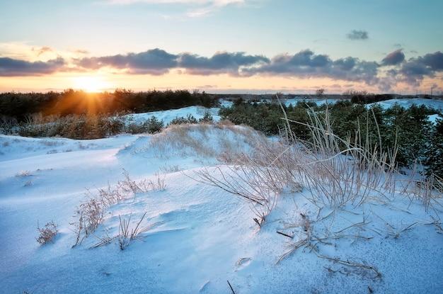 Зимний пейзаж с закатным небом. закат в заснеженном лесу