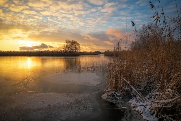 木々と川沿いの乾燥した葦のある冬の風景