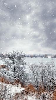 Зимний пейзаж с деревьями у реки во время снегопада