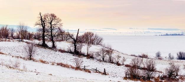 Зимний пейзаж с деревьями у реки во время восхода солнца. панорама