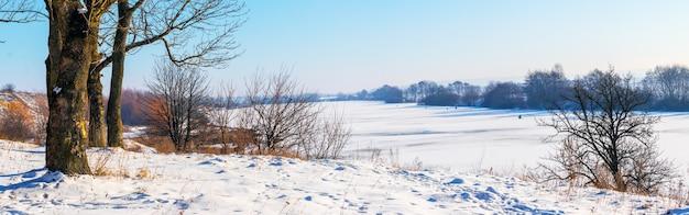 晴れた日の川沿いの木々のある冬の風景。川は氷と雪で覆われ、川の近くの木々や茂みの茂みで覆われています