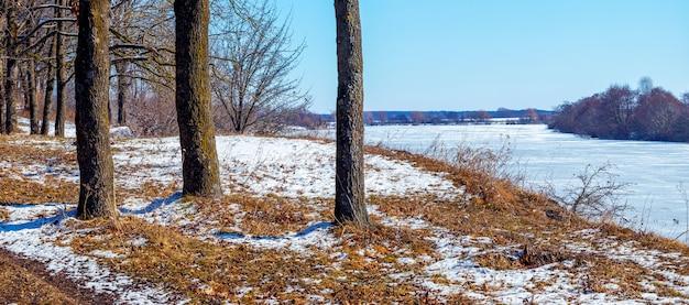 Зимний пейзаж с деревьями у реки в солнечный день