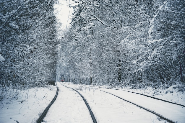 Winter landscape with trees covered snow, tram in forest, commuter train