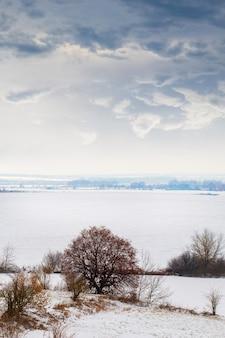 川岸に木々が生い茂る冬の風景、雪に覆われた野原、絵のように美しい曇り空、冬の日
