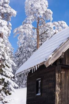 冬の景観、山の家