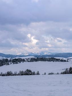 山の冬の景観