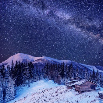 Зимняя волшебная ночь