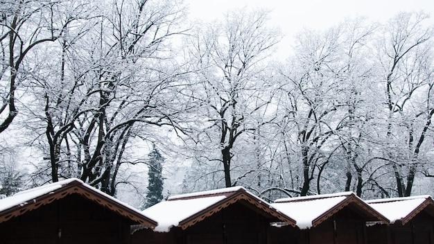 눈으로 덮여 나무와 겨울 시장