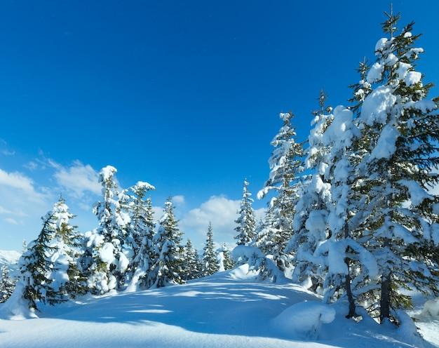 Зимний горный еловый лес заснеженный пейзаж (вершина папагено-бан - фильцмос, австрия)