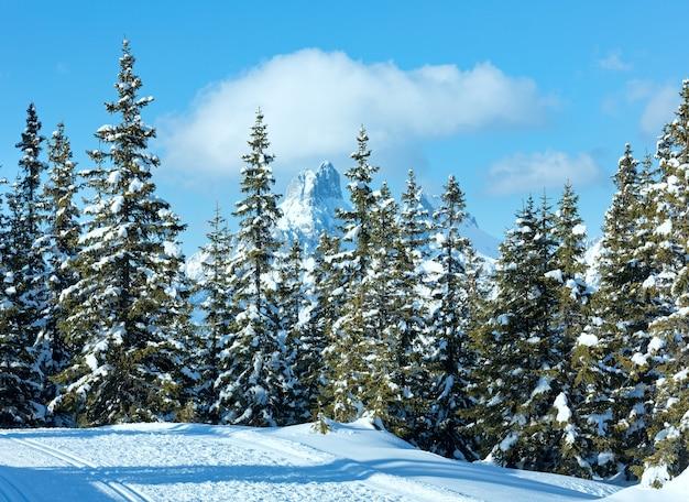 Зимний горный еловый лес заснеженный пейзаж вершина папагено-бан-фильцмос