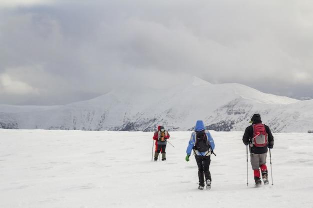 冬の山の風景。