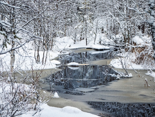 Winter mountain river in karelia flows through the forest. the power of wild majestic nature.