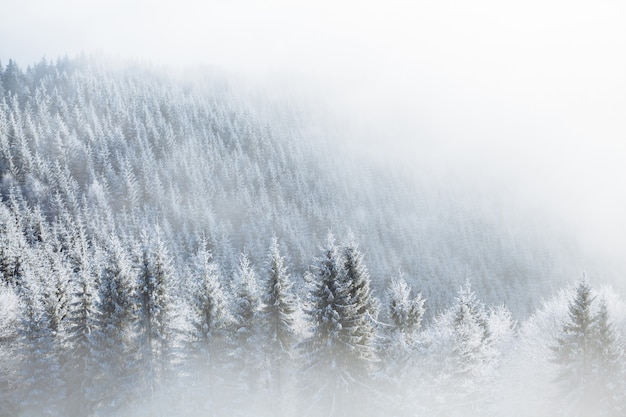 Зимние горы в европе