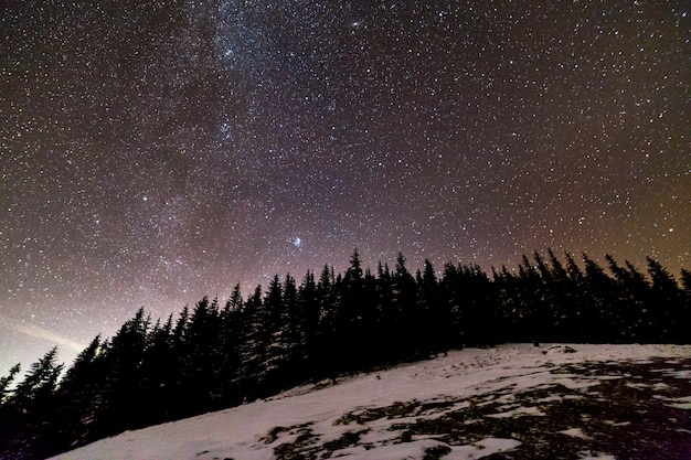 Winter mountains night landscape panorama. milky way bright constellation in dark blue starry sky over dark spruce pine trees forest, soft glow on horizon after sunset.