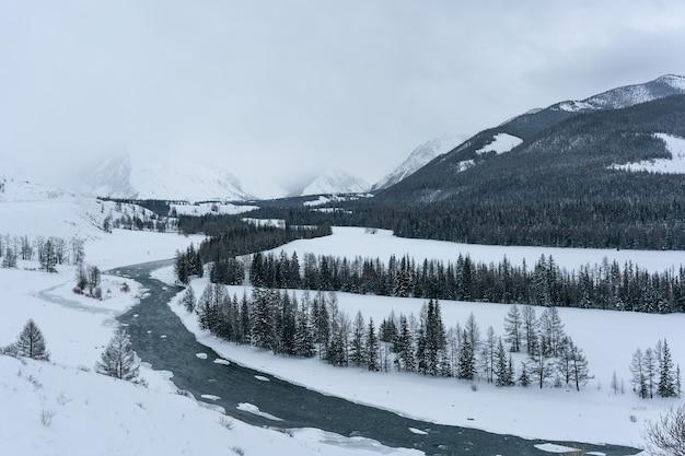 Winter in mountains. snow landscape. blizzard.