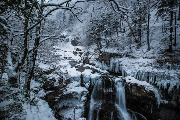 Winter in national park, pyrenees, spain