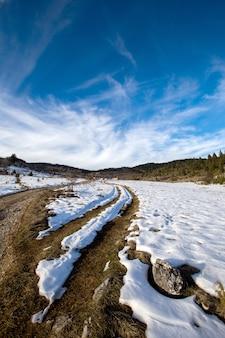 冬の自然の風景