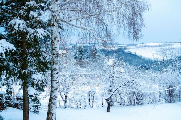農村の丘の冬の自然風景。雪で覆われた美しさの自然シーン