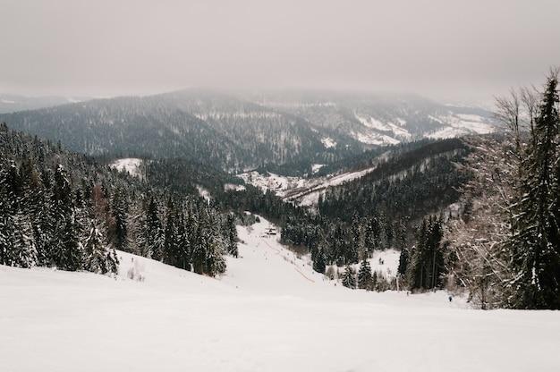 冬の自然。風景。スキーやスノーボードをしている人々は、カルパティア山脈のスノートラックで山から降りてきます。